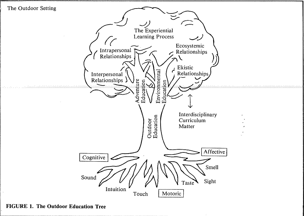outdoor_educationTRee